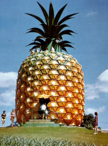 The Big Pineapple (Woombye, Queensland) Bob's house
