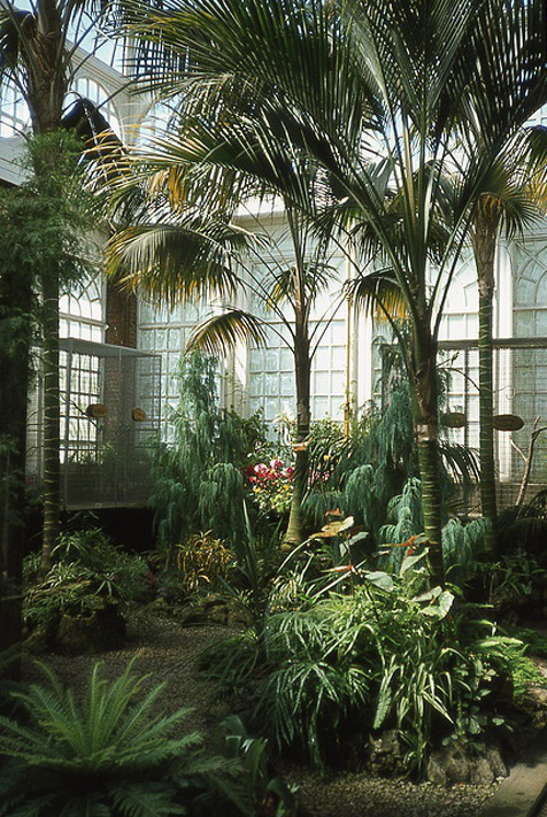Palm House (1974) par The Random Moose sur Flickr